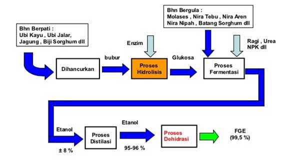 Proses Pembuatan Bio Etanol