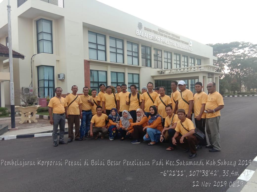 Pembelajaran Korporasi Petani Mesuji di Balai Besar Penelitian Tanaman Padi
