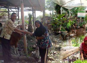 KWT Melati Desa Adi Luhur - Panca Jaya