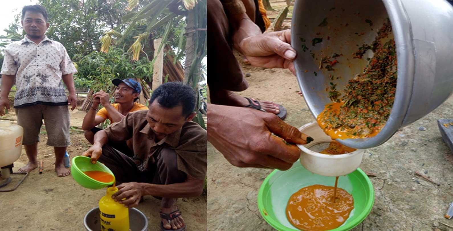 Pencegahan Penyakit Keriting Dengan Pestisida Nabati Di Poktan Makmur Jaya